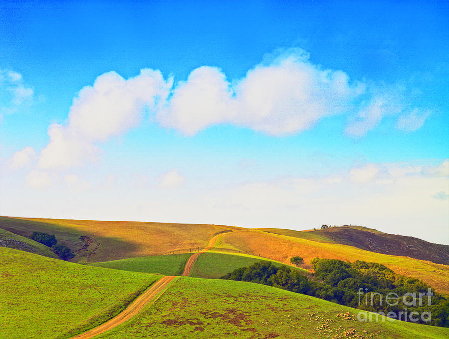 Landscape Photograph - Among The Rolling Hills by Frank Bez