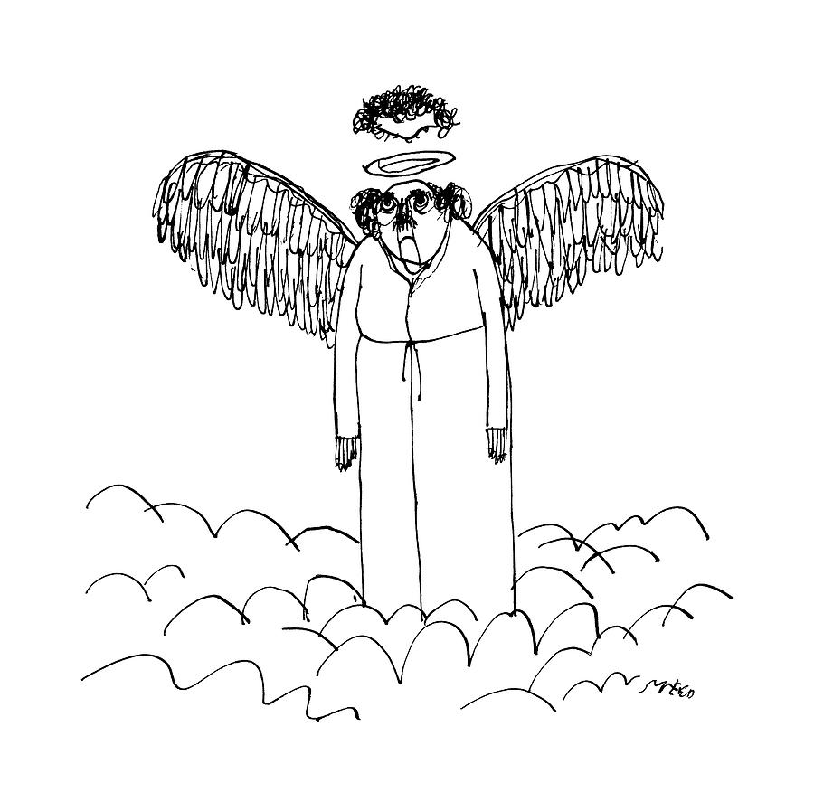 an angel u0027s halo cuts off the top of his head by edward steed