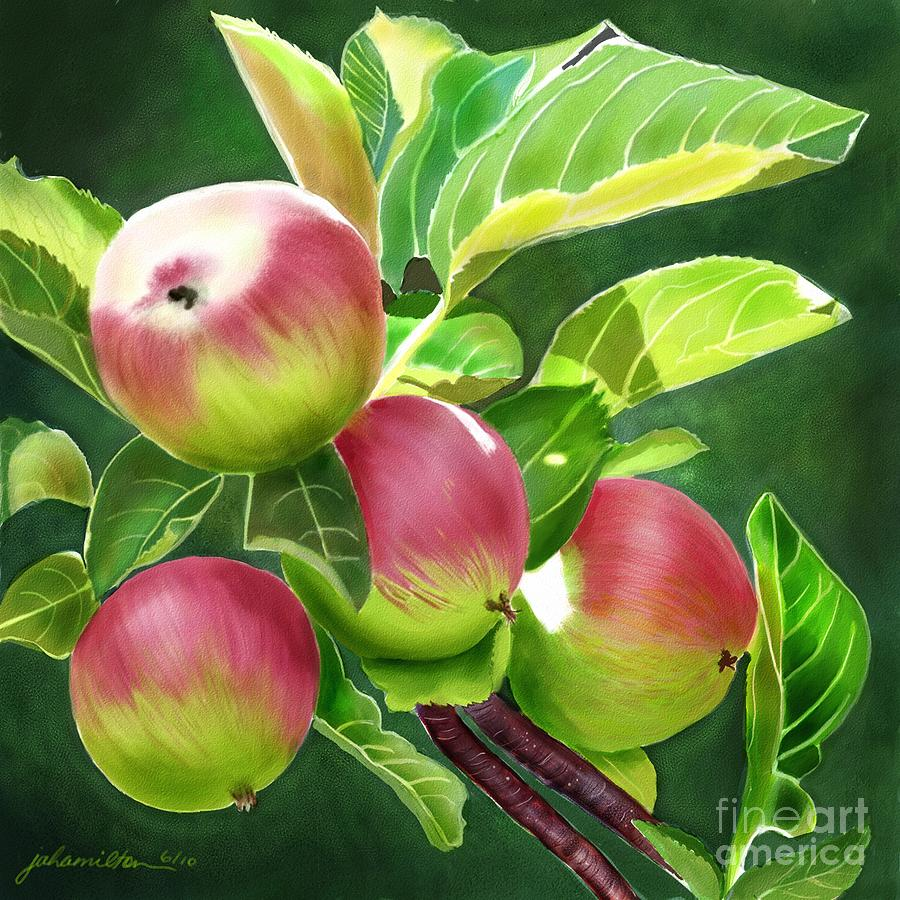 Apples Painting - An Apple A Day by Joan A Hamilton
