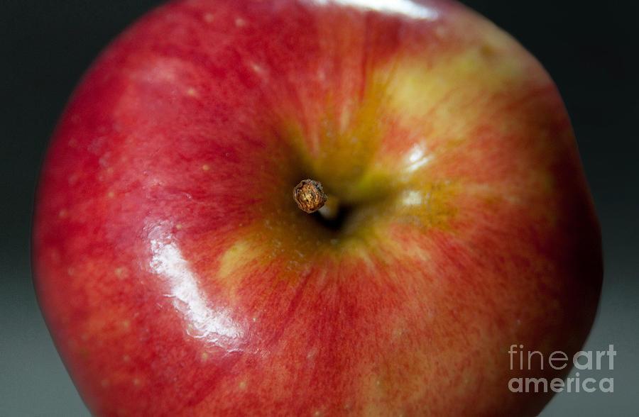 Apple Photograph - An Apple by Dan Holm
