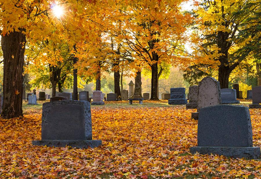 Forest Hill Cemetery Photograph - Forest Hill Autumn Light  by Mary Amerman
