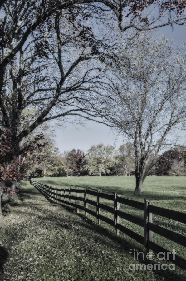 Autumn Photograph - An Autumn Stroll by Joe McCormack Jr