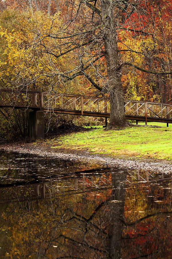 Autumn Photograph - An Autumns Moment by Karol Livote