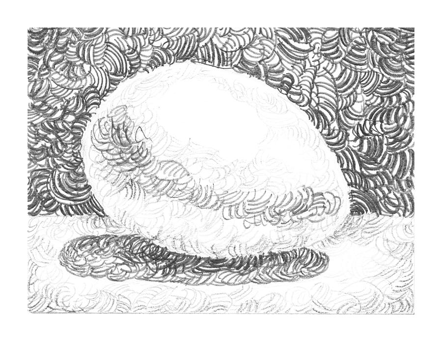 An Egg Study Three Drawing