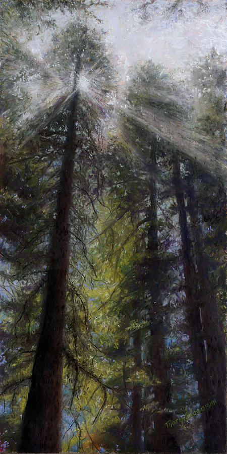 Pastel Painting - An Enchanted Forest by Mary Giacomini