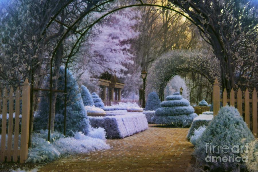 Infrared Photograph - An English Garden by Jason Kolenda