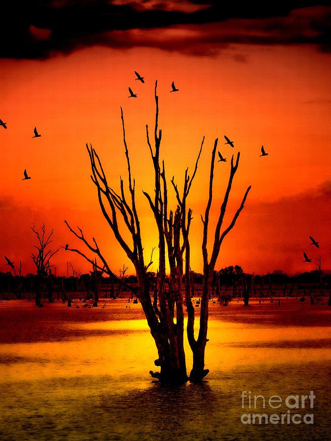 Nature Photograph - An Evening by Ben Yassa