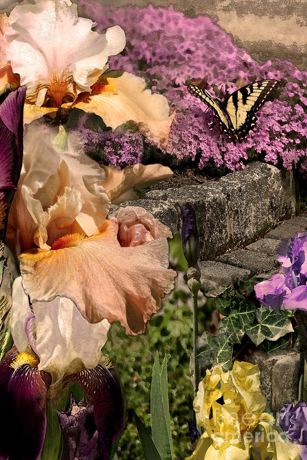 Flowers Digital Art - An Iris Surprise Center by Paul Gentille