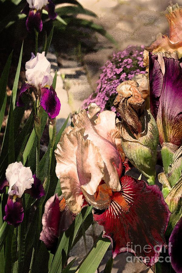 Flowers Digital Art - An Iris Surprise Left by Paul Gentille