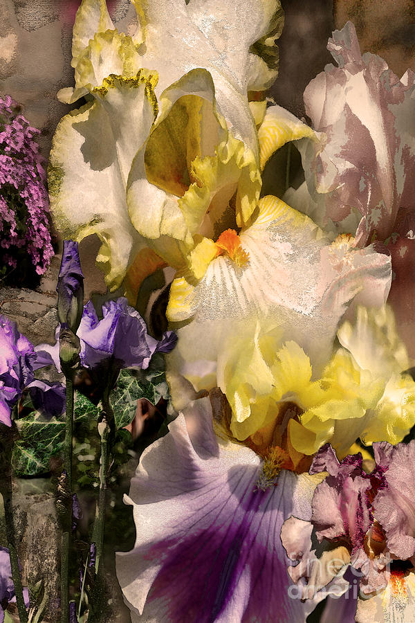 Flowers Digital Art - An Iris Surprise Right by Paul Gentille