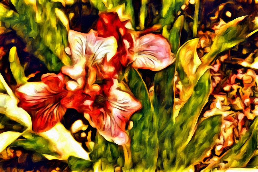 Iris Photograph - An Iris View by Alice Gipson