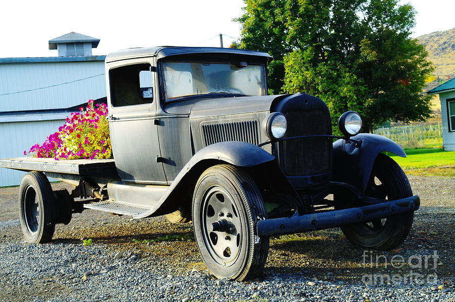 Old Trucks Photograph - An Old Farm Truck  by Jeff Swan