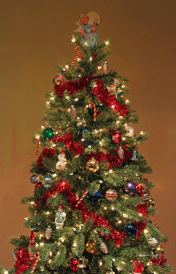 christmas photograph an old fashioned christmas tree by suzanne gaff