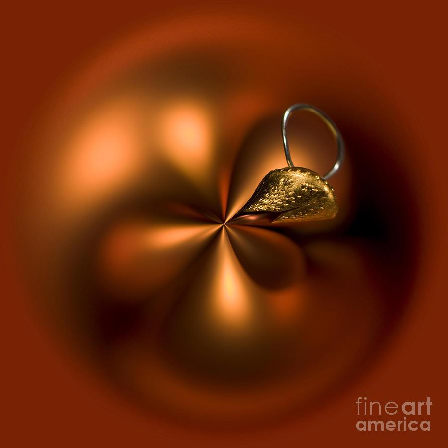 Orange Photograph - An Orb Of Orange by Anne Gilbert