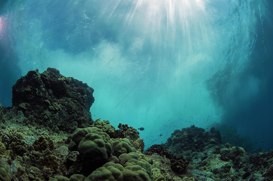 An Underwater Cave Off The Coast