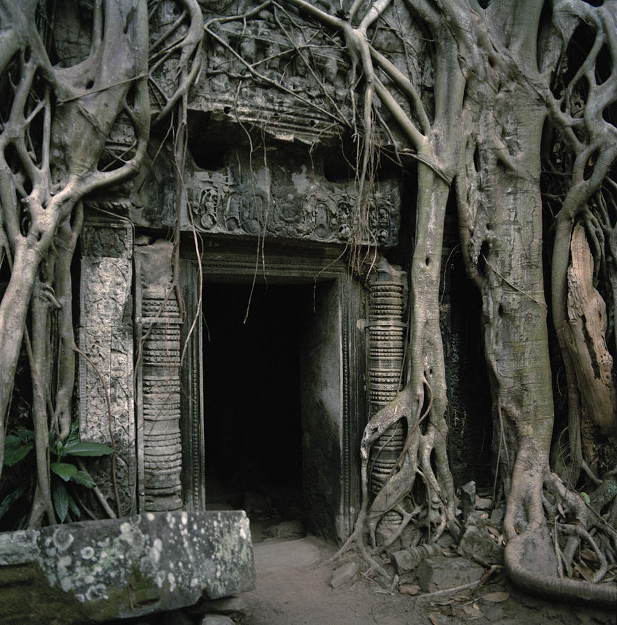 Asia Photograph - Ancient Angkor by Shaun Higson