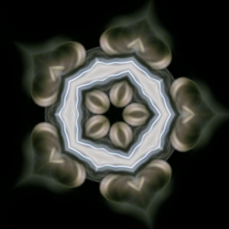Mandala Photograph - Ancient Light I by Lisa Lipsett