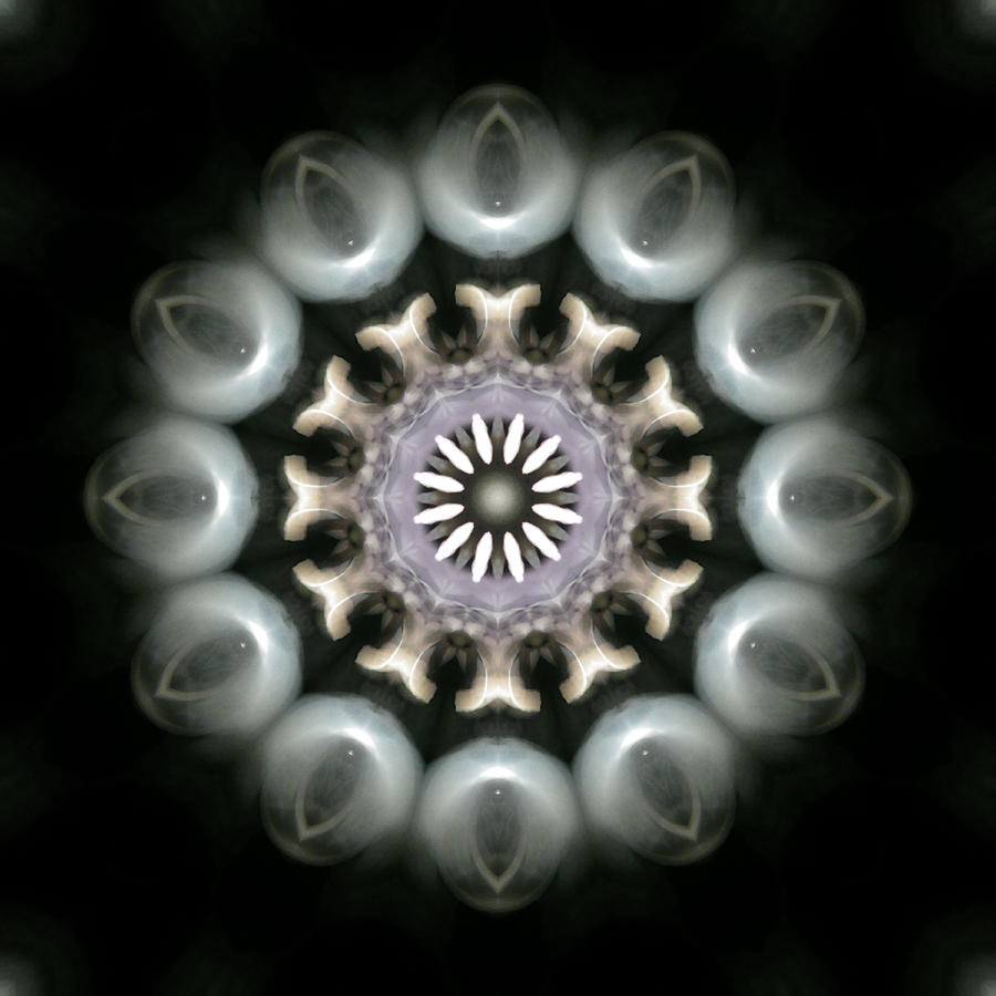 Mandala Photograph - Ancient Light 3 by Lisa Lipsett