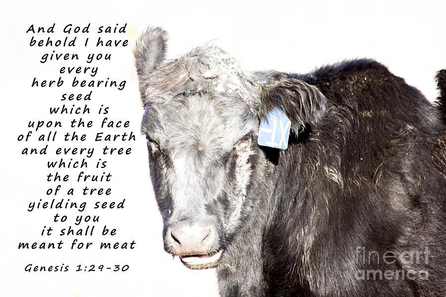 Poster Photograph - And God Said by Janice Rae Pariza