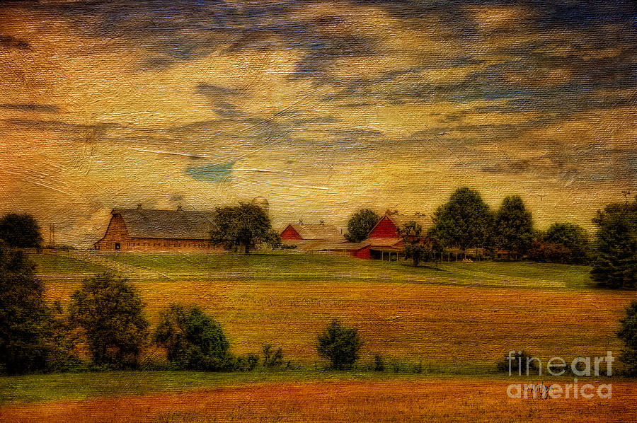 Farm Photograph - And The Livin Is Easy by Lois Bryan