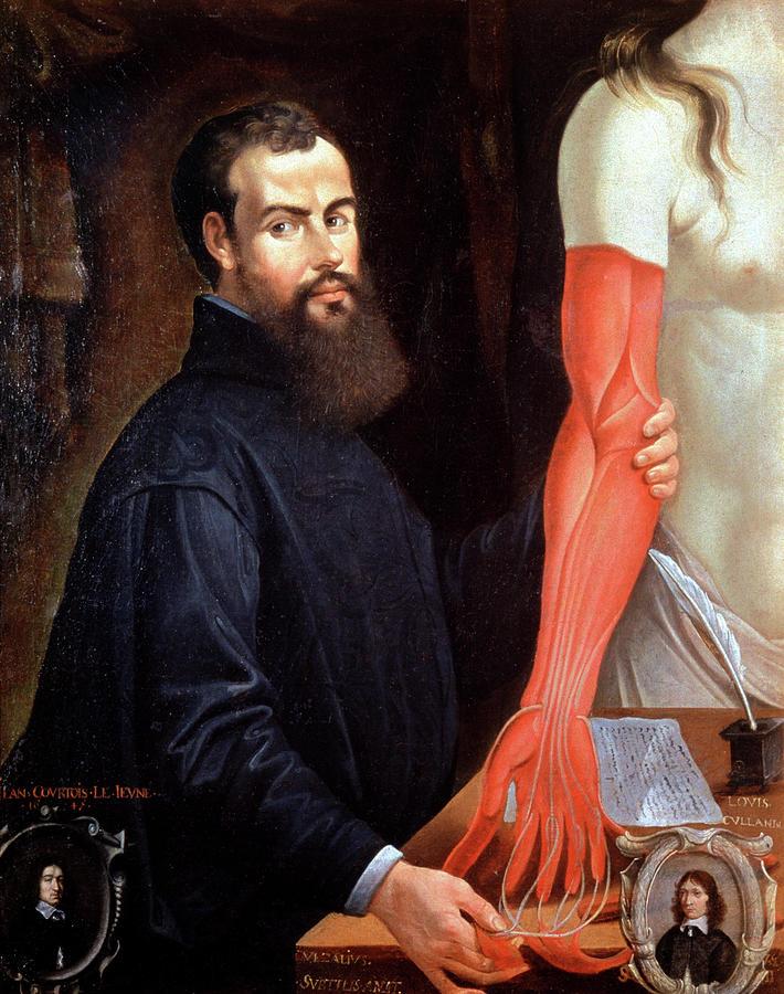 Andreas Vesalius Photograph - Andreas Vesalius by Cci Archives/science Photo Library