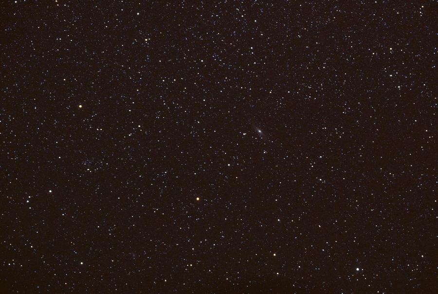 Andromeda Photograph - Andromeda by John W. Bova