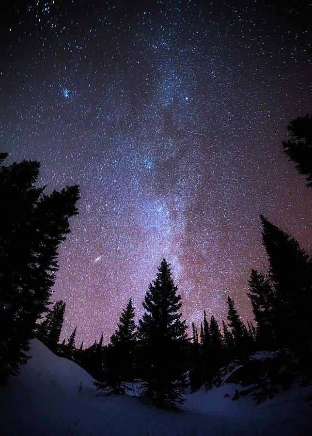 Andromeda Our Neighbor Photograph