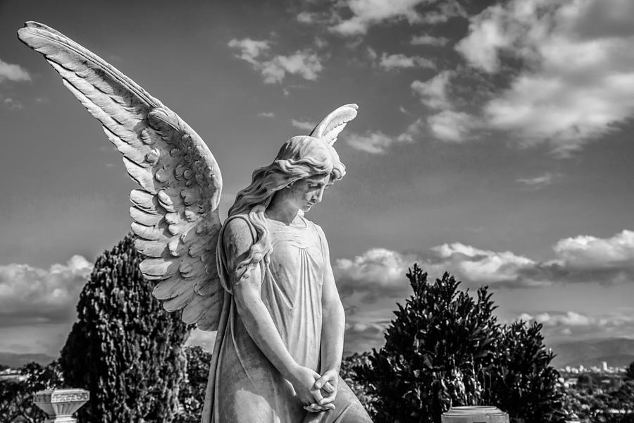 Angel Photograph - Angel At The Heredia General Cemetery by Andres Leon