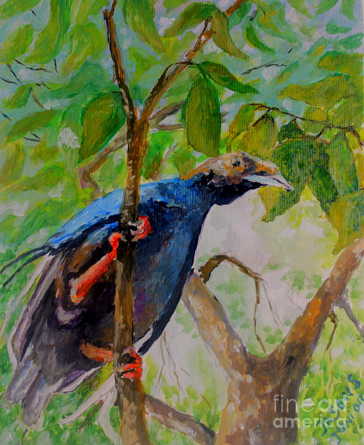 Bird Painting - Angel Bird Of  North Moluccas by Jason Sentuf