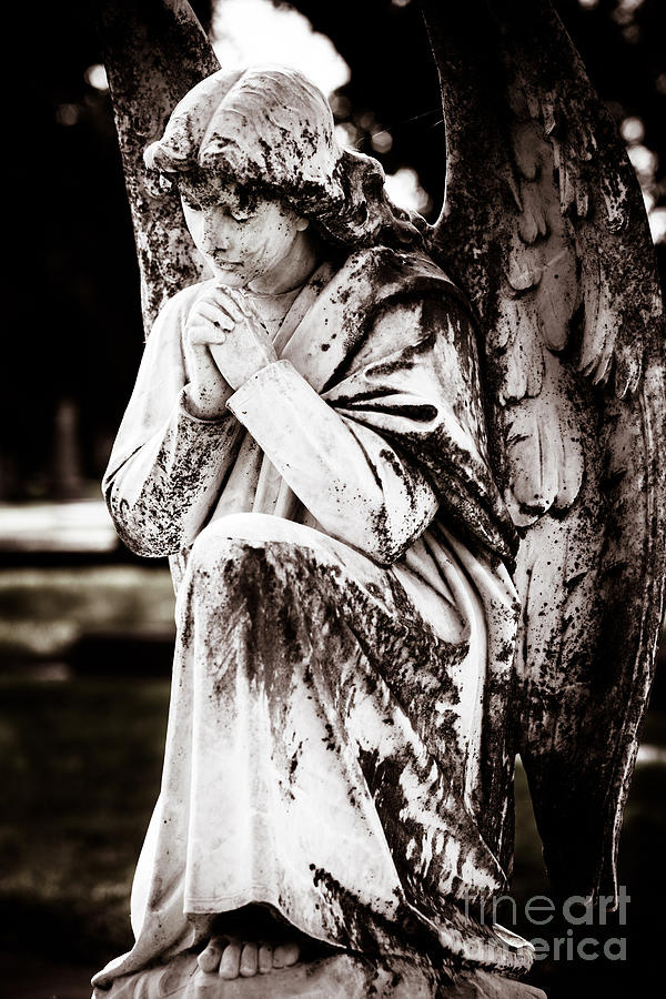 Angel Photograph - Angel In Prayer by Sonja Quintero