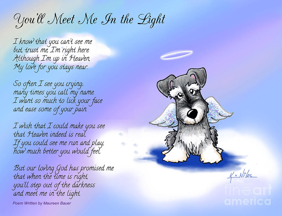 Schnauzer Drawing - Angel Schnauzer With Poem by Kim Niles