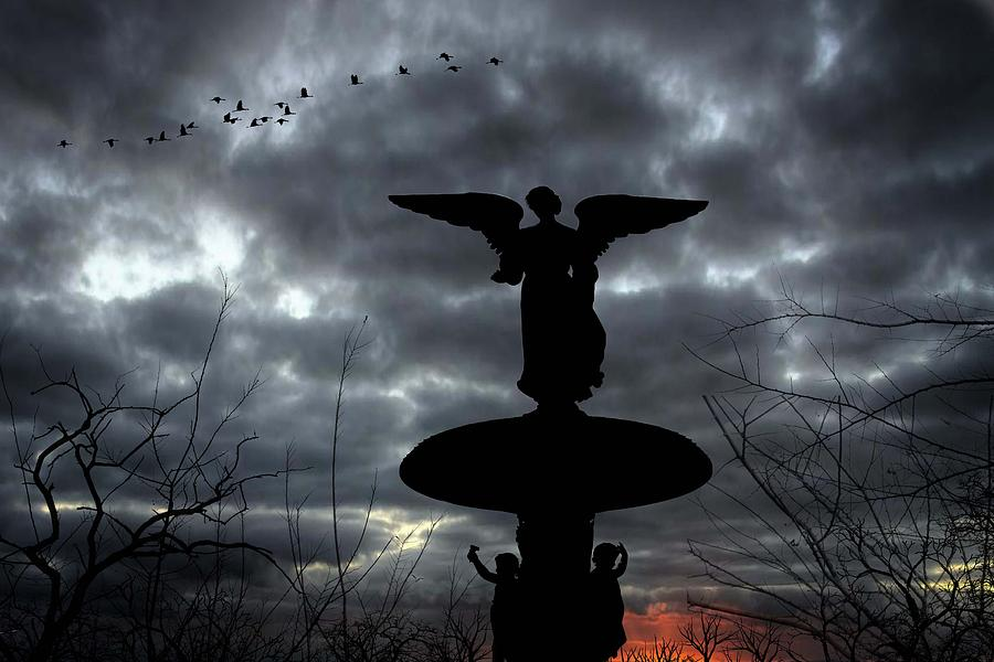 Central Photograph - Angel Storm by Gina Brake
