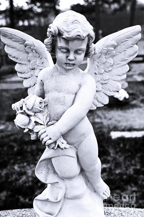 Angel Wings Photograph - Angel Wings by John Rizzuto