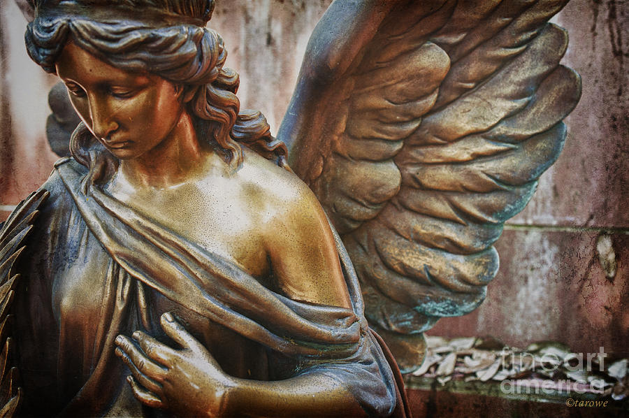 Angel Photograph - Angelic Contemplation by Terry Rowe