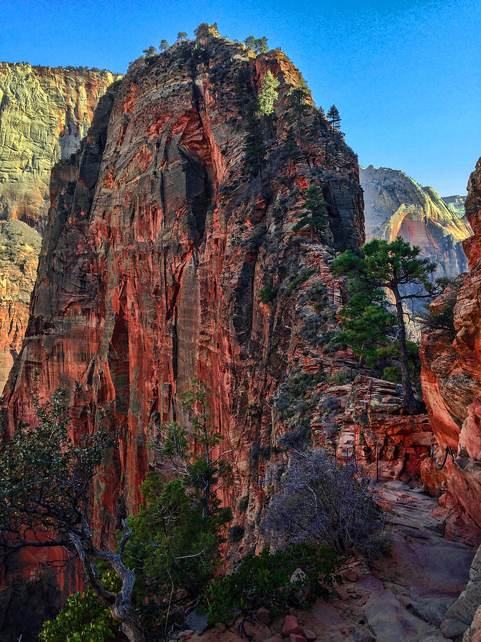 Zion Photograph - Angels Landing by Chad Dutson