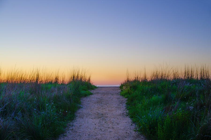Angelsea Photograph - Angelsea Beach Path Before Sunrise by Bill Cannon