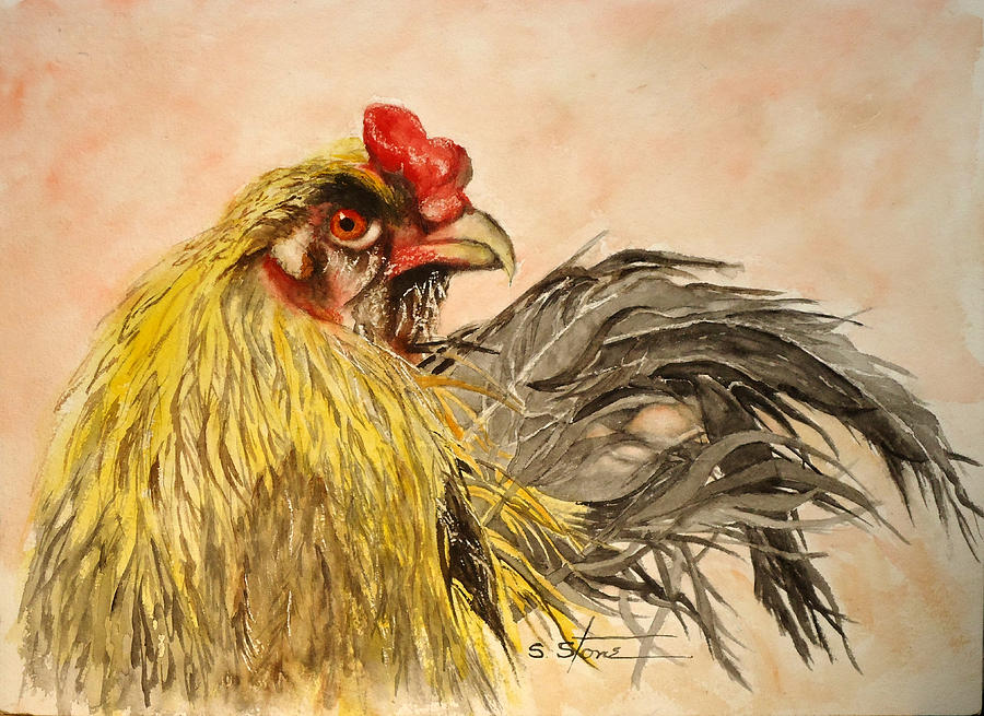 Angry Rooster by Sandra Stone