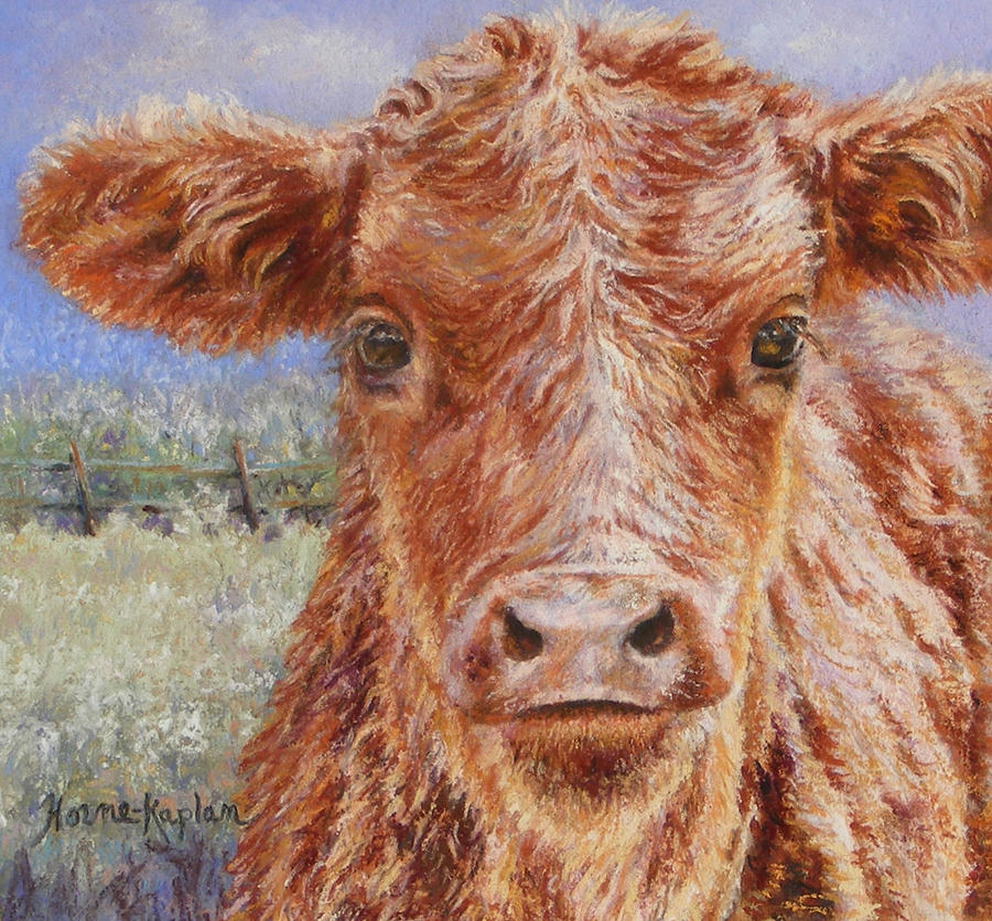 Angus Calf Norman III by Denise Horne-Kaplan