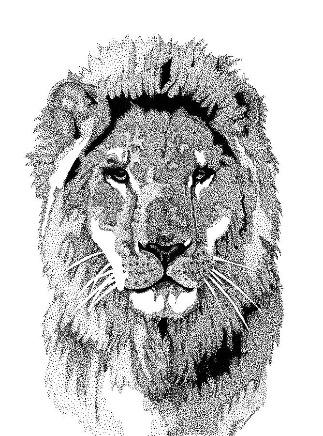 Lions Painting - Animal Prints - Proud Lion - By Sharon Cummings by Sharon Cummings