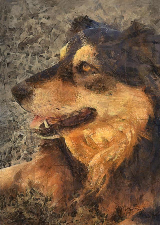Dog Photograph - animals - dogs - Faithful Friend by Ann Powell