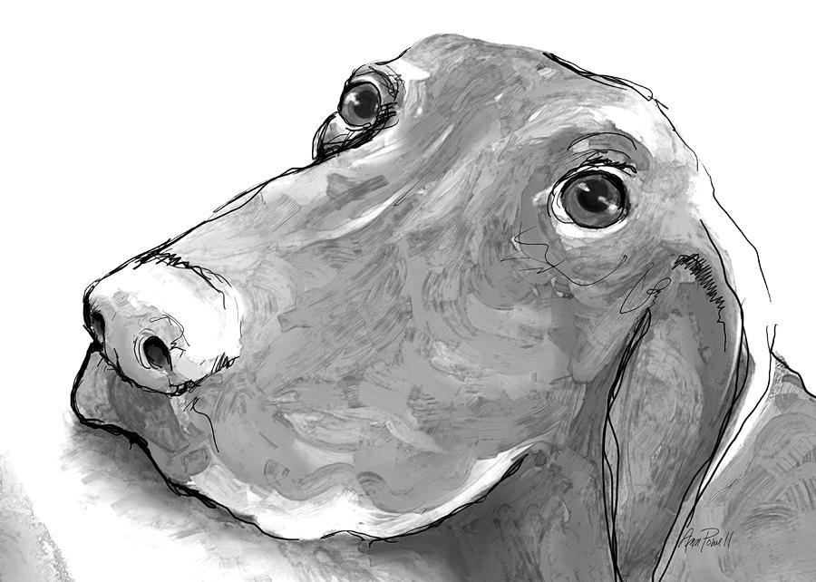 Dog Digital Art - animals - dogs - Feed Me Please by Ann Powell