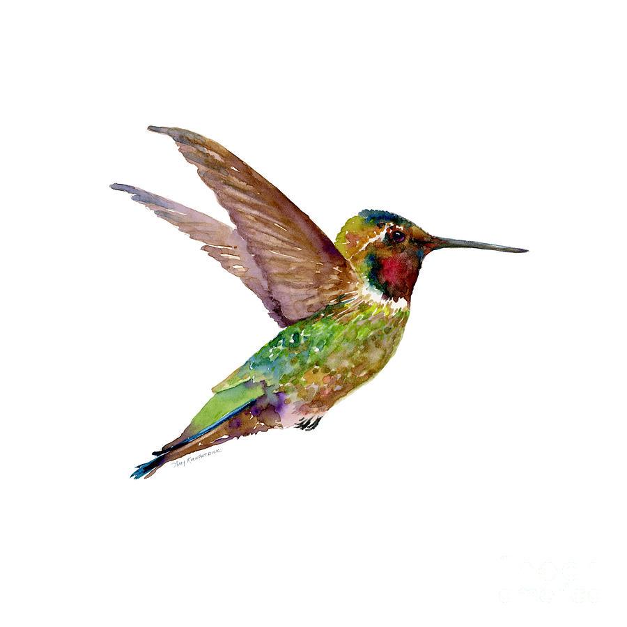 Anna Hummingbird Painting