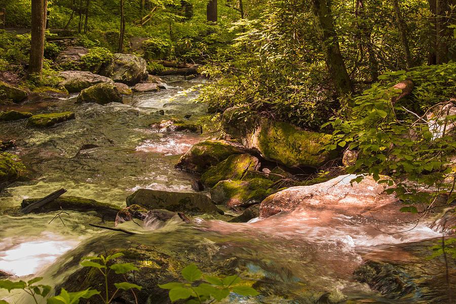 Anna Ruby Falls Photograph - Anna Ruby Falls by Christina Manassa