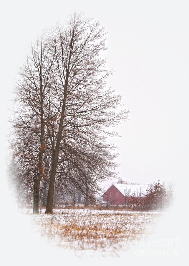Winter Photograph - Annies Barn by Pamela Baker