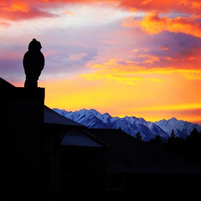 Canada Photograph - Another Awesome Bc Sunrise! #bc #canada by Brian Governale