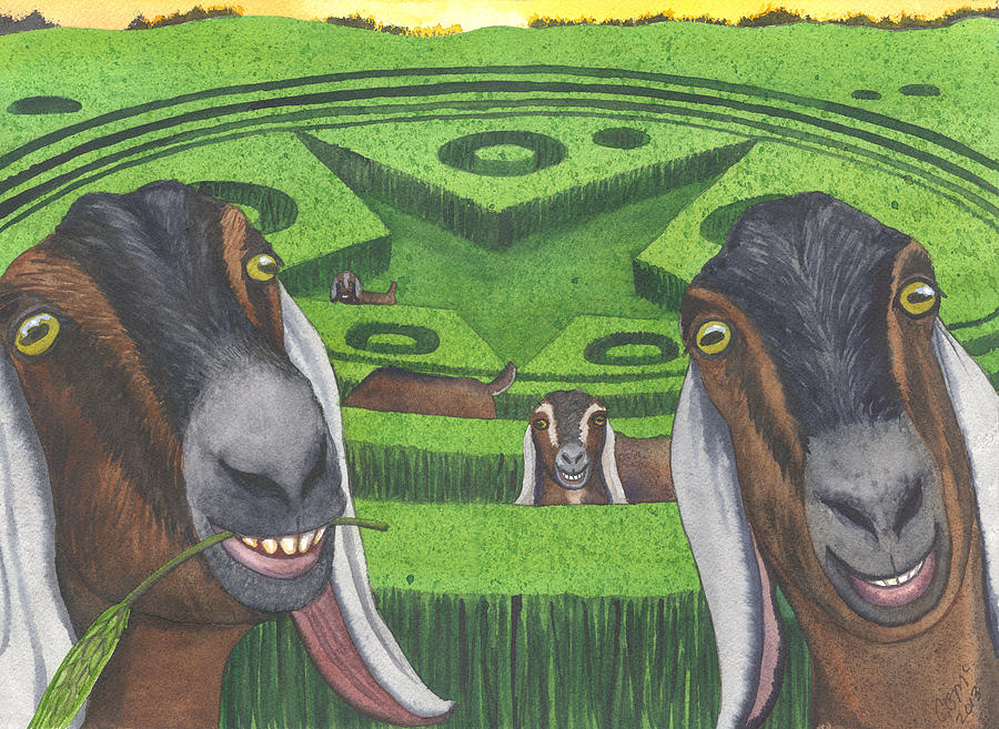 Goat Painting - Another Busy Night by Catherine G McElroy