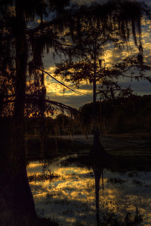 Sunset Photograph - End Of The Day by Ester McGuire