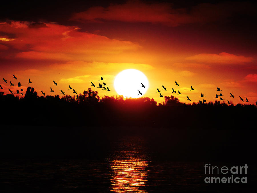 Landscape Photograph - Another Sunset by Ben Yassa