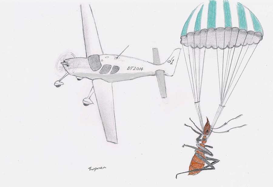 Ants Drawing - Ant Rescue by Dan Twyman