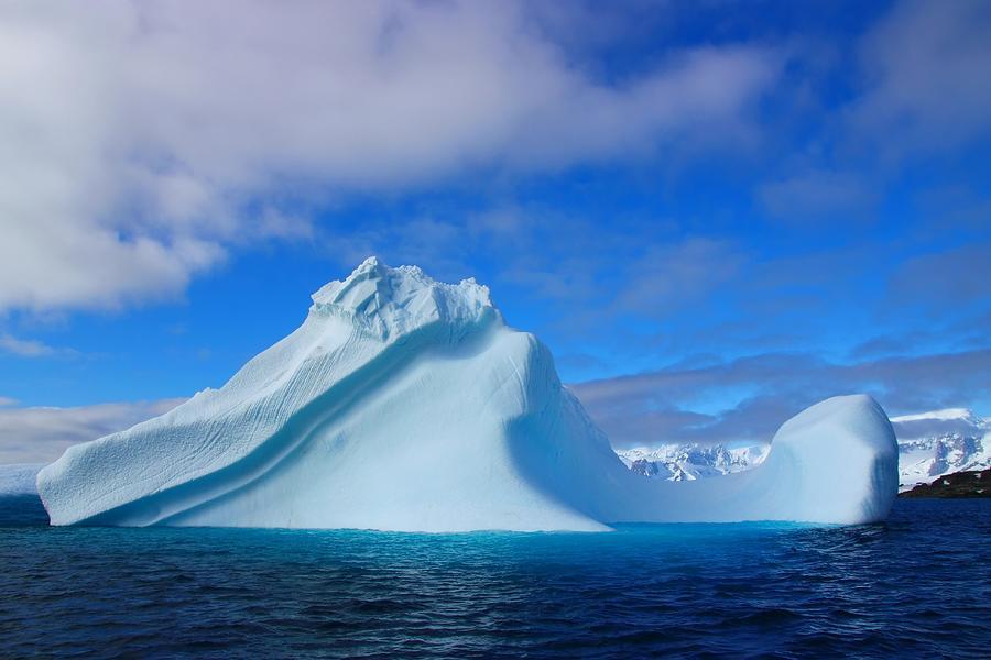 Antarctic Iceberg Photograph By Fireflux Studios